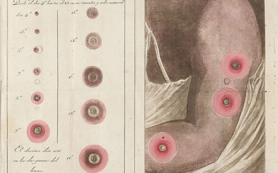 The Inscriptome: virus as a visual instrument